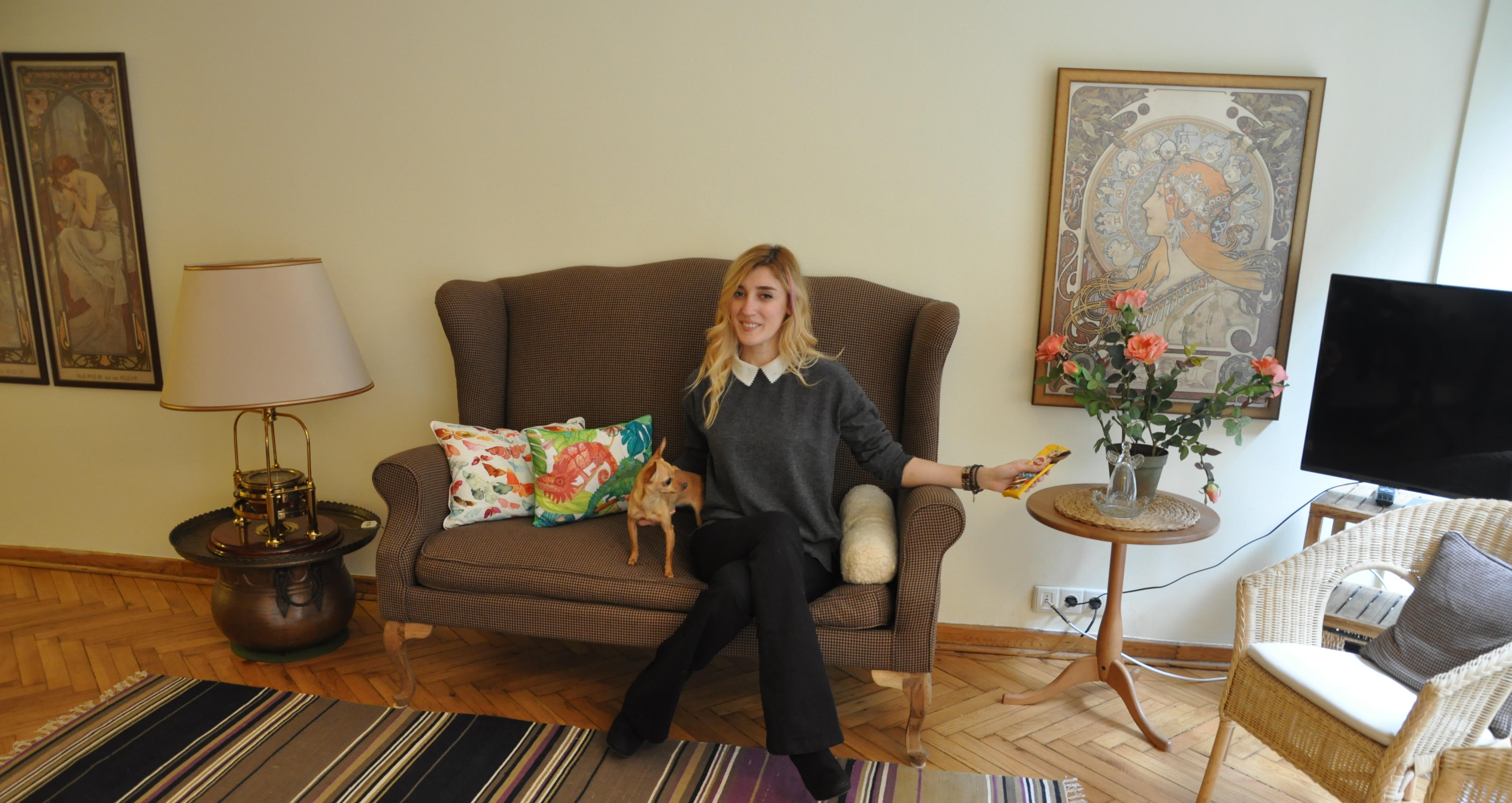 misafirlik köpegimle misafirlikteyim ne yapmalıyım burcu ozcan chihuahua mira  11