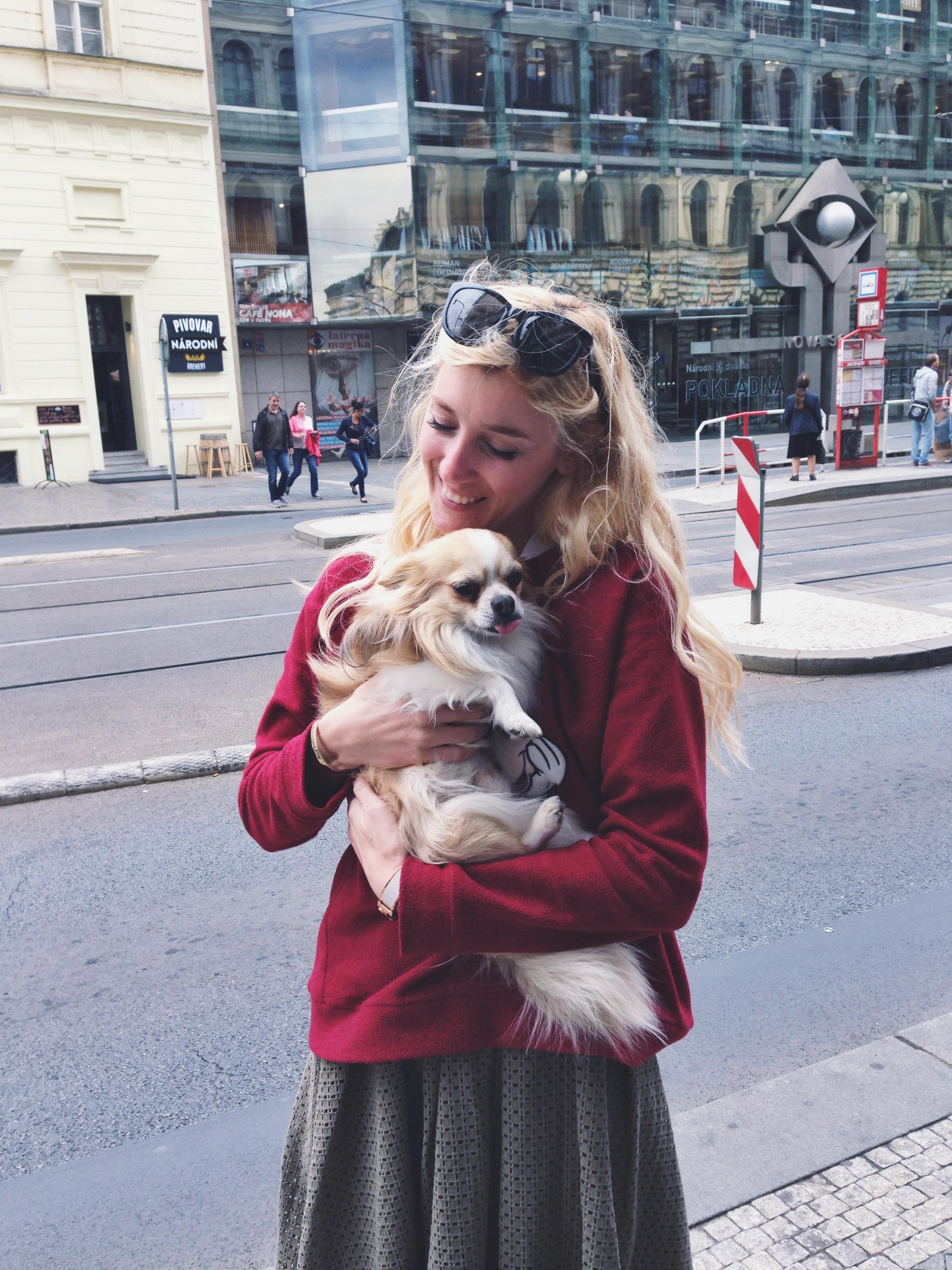 burcu_ozcan_cat&dog_dergisi_chihuahua_mira_diaryofburcu_cat_and_dog_magazine (1)