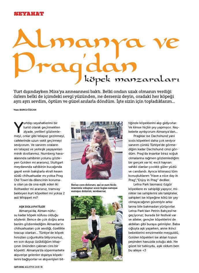 burcu_ozcan_cat&dog_dergisi_chihuahua_mira_diaryofburcu_cat_and_dog_magazine (1)3