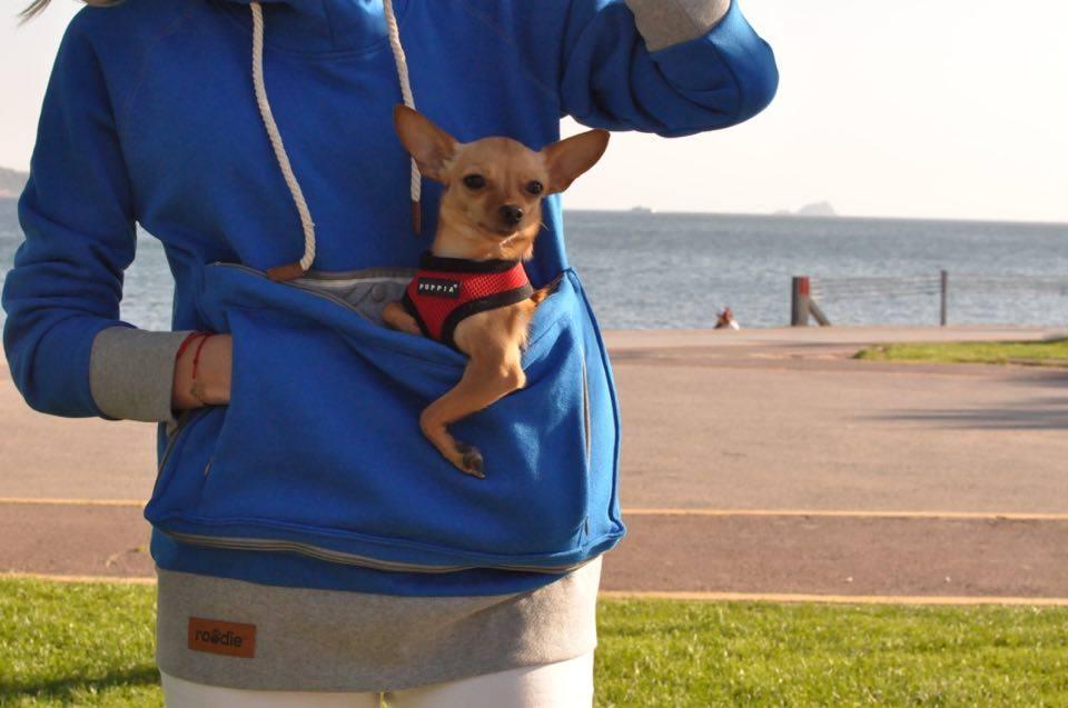 burcu-ozcan-roodie-hoodie-pet-chihuahua-mira-pet-tasima-sweatshirt